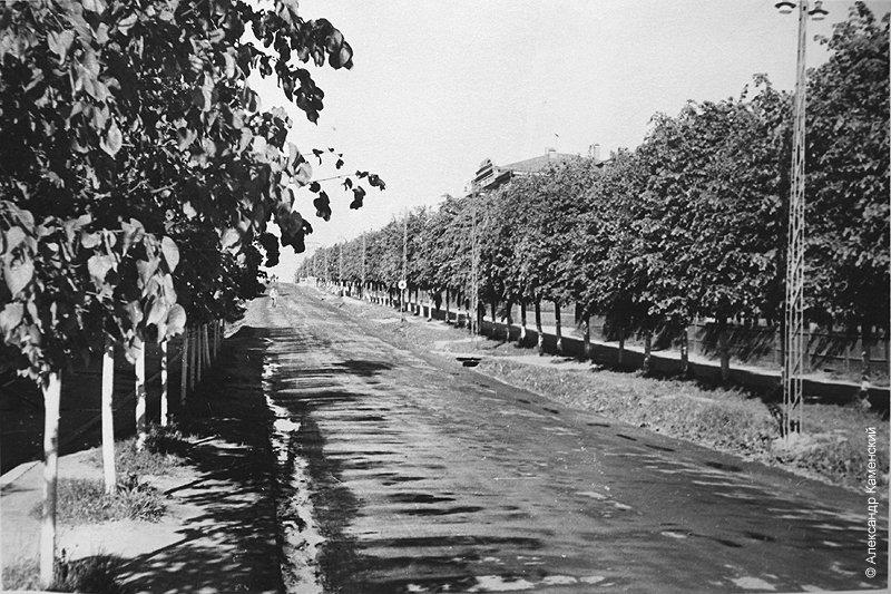 Проспект Ленина, 1950-е годы