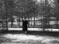 """В парке за """"штабом"""" (между школой №2 и домом №25/2 на проспекте Испытателей), 1960-е годы"""