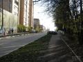 На пешеходной дорожке у школы №3. Октябрь 2008 года