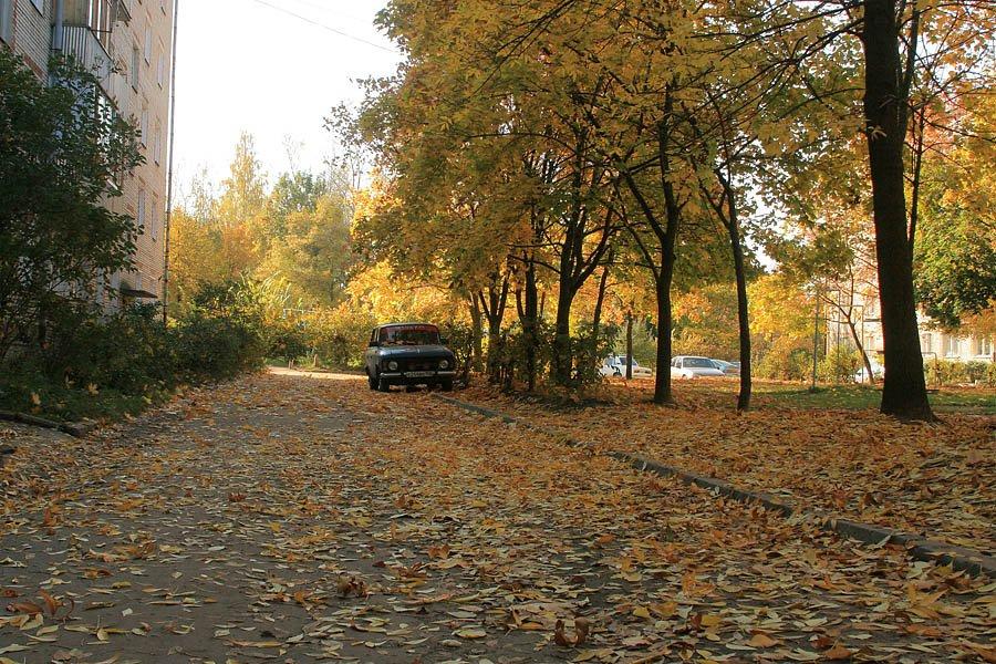 Улица Дачная, осень во дворе, 2007 год