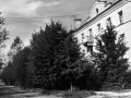 Этот снимок 80-х годов сделан от перекрестка улиц Горького и Центральной.