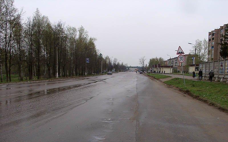 Вид на проспект Испытателей от ул Спортивной, май 2003 года