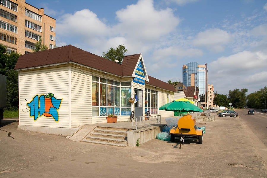 """Новые магазины около """"Придорожного"""" на проспекте Испытателей, 2008 год"""