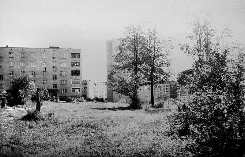 Двор дома №27, деревья поселка, 80-е годы