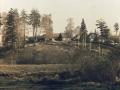 Красный поселок, дома на улице Белинского, 1987 год