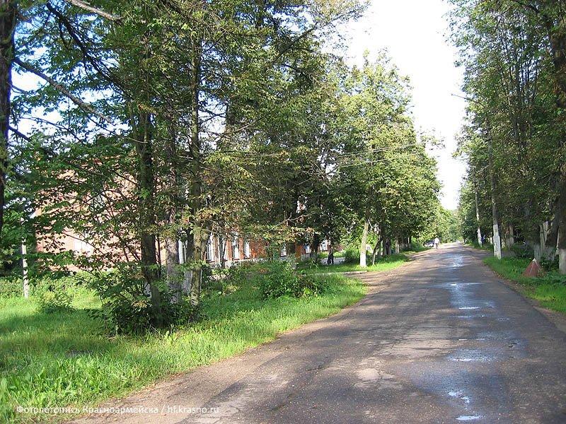 Здание администрации города (дом №25 по улице Чкалова) не видно из-за зелени, 2004 год