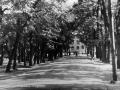 Улица Чкалова, «аллейка», на снимке виден дом №12, который разрушен в 1980-е годы, снимок 1970-х годов