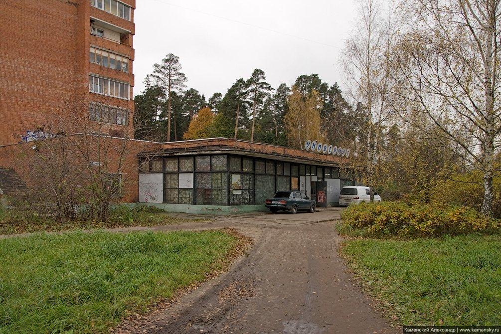 Дом №2 по улице Новая Жизнь с магазином, который ранее назывался Электротовары, 2010 год
