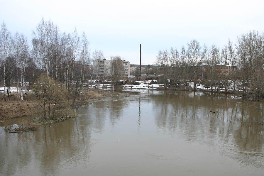 Вид на Новую жизнь с автомобильного моста, разлив реки, 2005 год