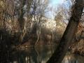 Город сильно зарос кустарником и деревьями и в наши дни с реки почти не видно домов Новой жизни, а из окон, соответственно, не видно воды. 2006 год