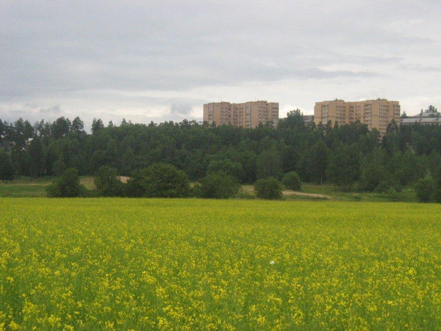 Панорама городского пляжа и 11-этажных домов на улице Гагарина, 2004 год