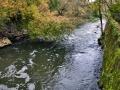 Осень на красноармейской плотине, сентябрь 2013 года