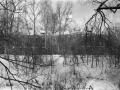 Отбельная казарма, 1950-е годы