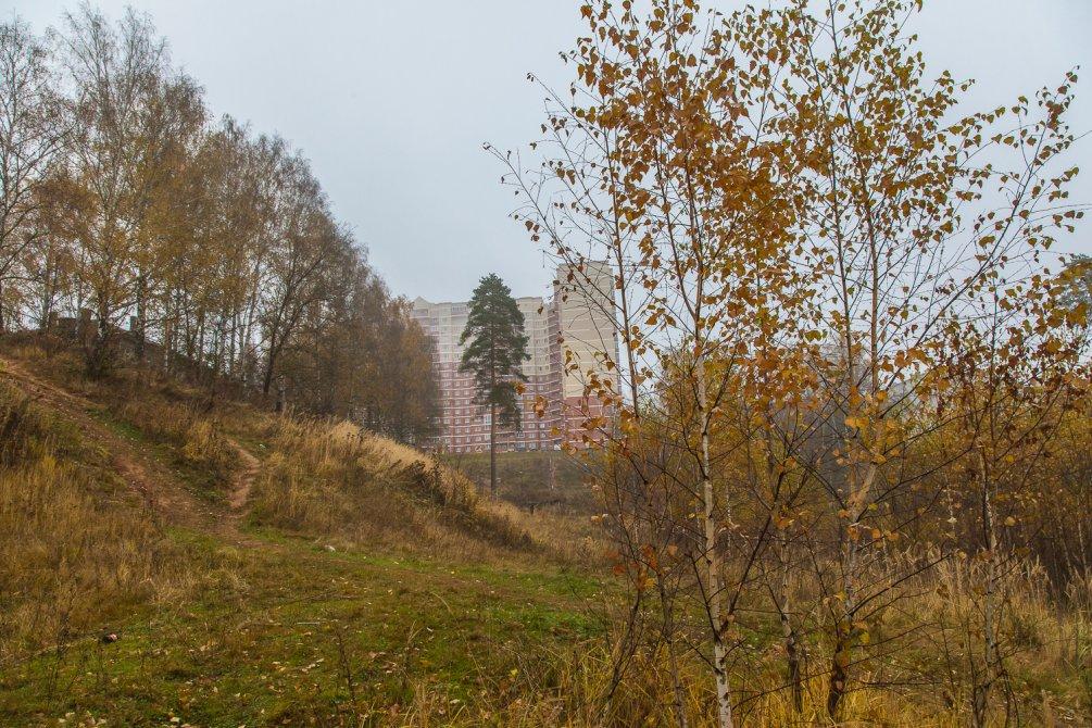 Осень в Красноармейске, окрестности улицы Гагарина, октябрь 2015 года