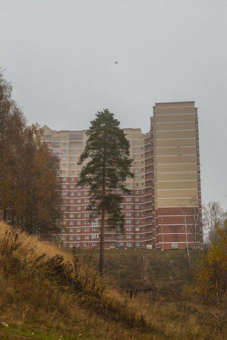 Осень в Красноармейске, окрестности Красного Поселка, октябрь 2015 года