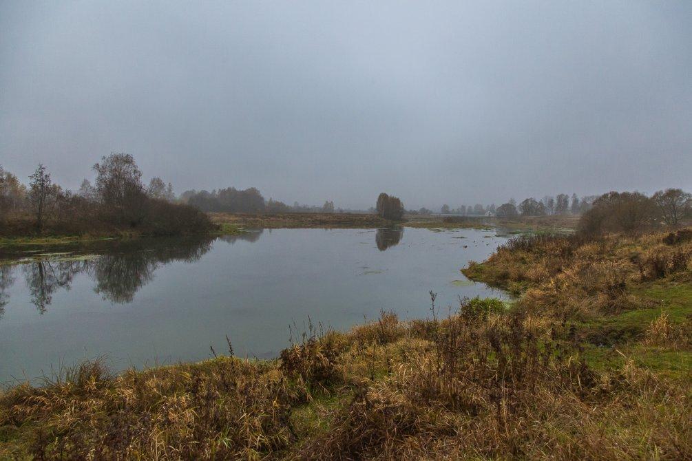 Река Воря, октябрь 2015 года