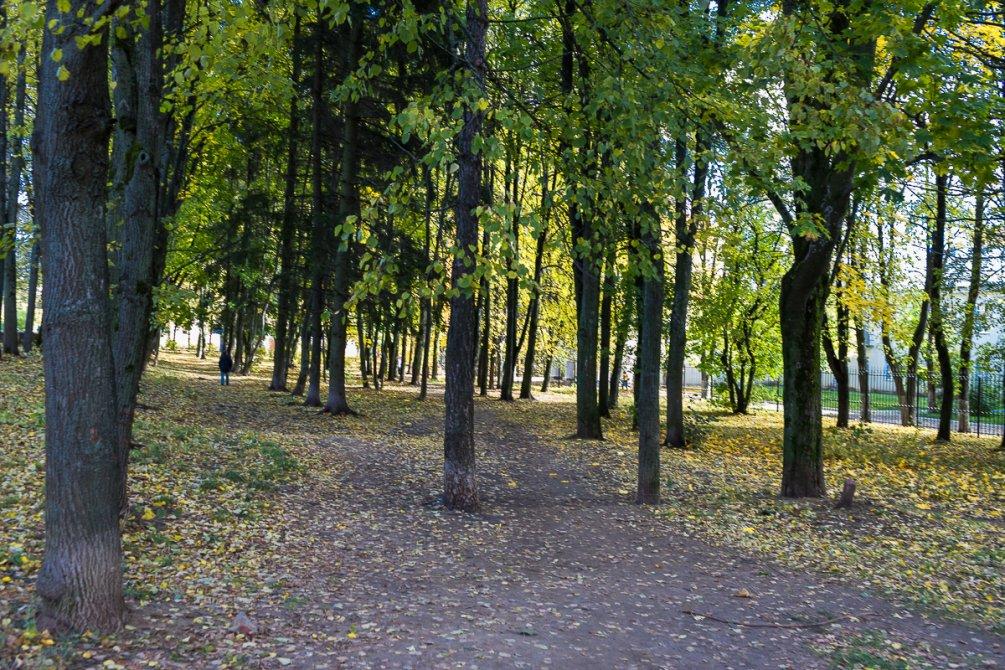 Парк у ДК Ленина, октябрь 2017 года