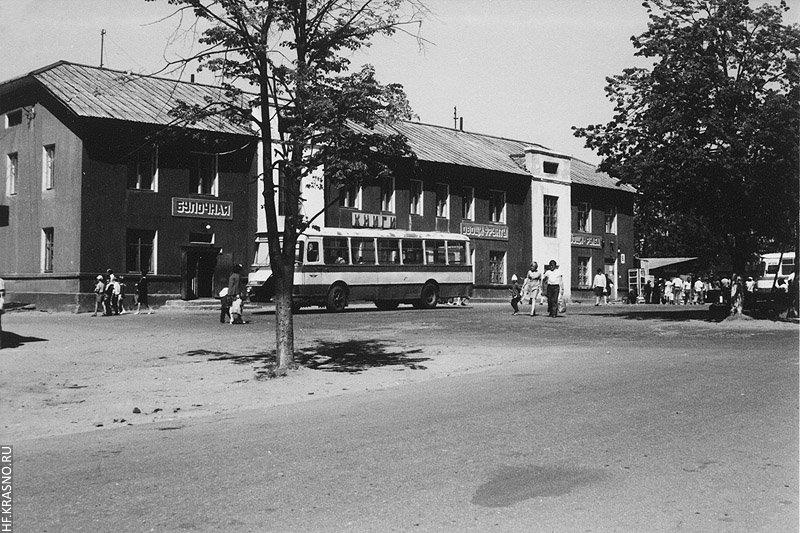 1980-е годы. В правой части снимка видна таксофонная будка и крыша кафе «Минутка». В кафе продавали мороженное на развес и посыпали его шоколадной крошкой.