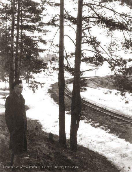 Путь УЖД поворачивает к мосту через реку Плаксу, 1940-е годы