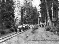 Поход пионерского лагеря НИИ Геодезия по узкоколейке, 1960-е годы