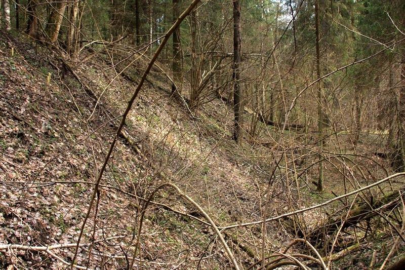 Здесь проходил путь УЖД на холмы