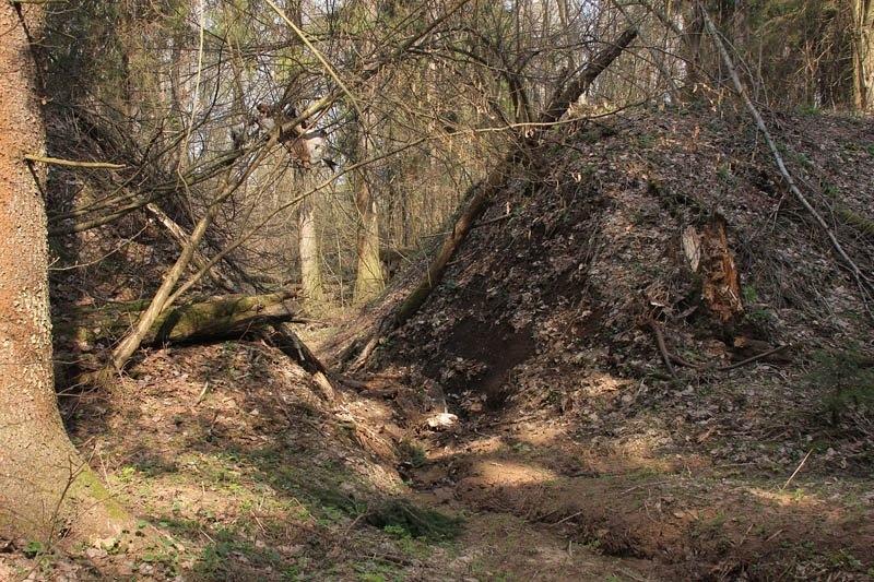 Разрушенная насыпь, по которой проходил путь УЖД на холмы