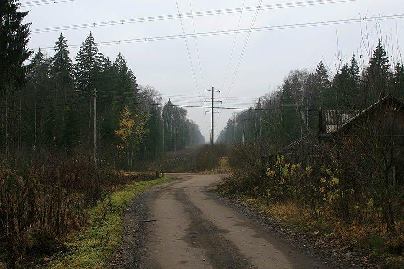 """Здесь проходил путь УЖД, но с этого места разделялись дороги """"На холмы"""" и """"на болото"""""""