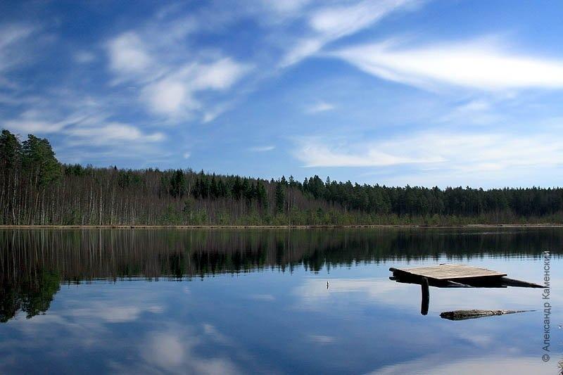 Озеро, которое образовалось на месте бывших торфоразработок
