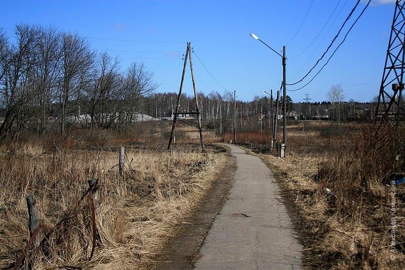 Здесь проходили пути УЖД, окрестности Софрино